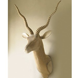 Carved Trophy Head-Ibex-Cantoni Furniture-modern meets eclectic