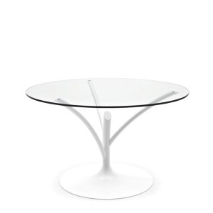 Acacia Dining Table by Calligaris-Cantoni Modern Furniture